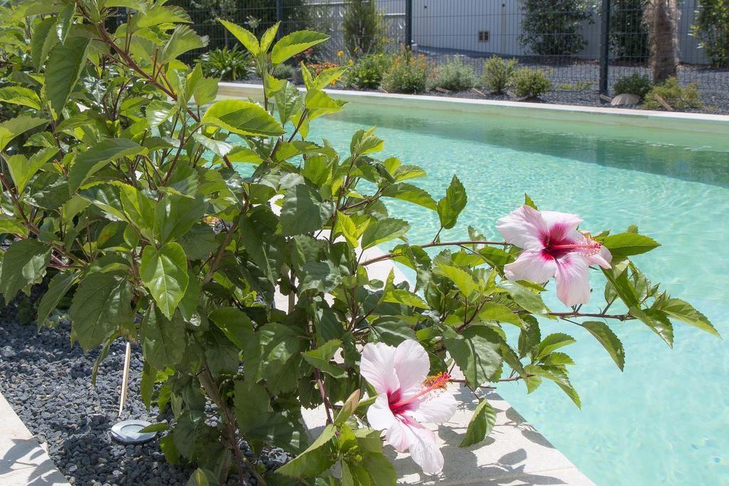 piscine en beton projete moderne